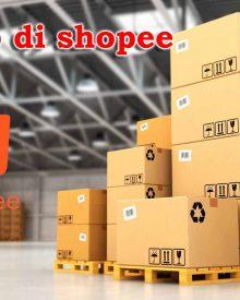 Tips Jualan Dengan Sistem Dropship di Shopee