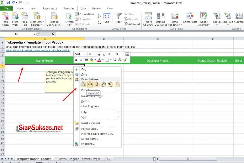cara upload produk ke tokopedia - data di paste ke template tokopedia