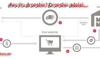 dropship adalah