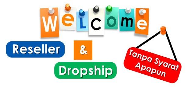 Peluang Usaha Online dengan bisnis dropship